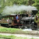 Oravská lesná, železnica